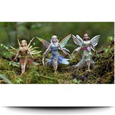 Buy Now Flitter Fairies Three Pack Daria